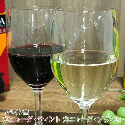 ハウスワイン 赤白2種 カニャーダティント/カニャーダブランコ 各3L 計2箱 ワイン ボックス BOX イエノミ 家飲み 送料無料