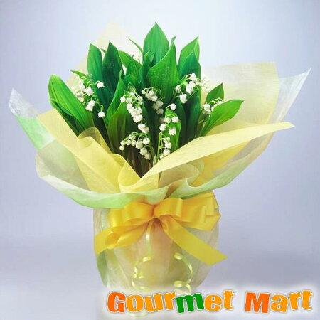【花言葉:幸福の再来】母の日に北海道産の可愛い花「すずらん鉢植え」ラッピングしてお届けいたします!