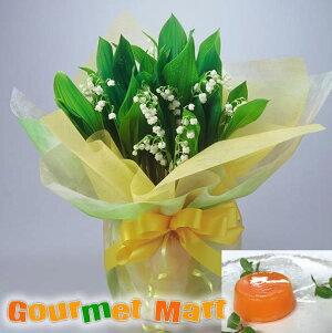 早割 送料無料!母の日ギフト!すずらん鉢植え(鉢花)と夕張メロンピュアゼリーセット!母の日定番のお花をラッピングしてお届けします