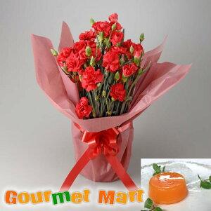 早割 送料無料!母の日ギフト!カーネーション鉢植え(鉢花)と夕張メロンピュアゼリーセット!母の日定番のお花をラッピングしてお届けします