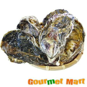 弁天かき[2L(A4)サイズ]10個セット 北海道産 牡蠣 カキ 殻付き 生食 父の日 ギフト 送料無料