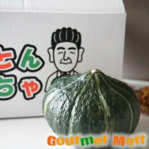 北海道栗山産 とことんかぼちゃ6玉入(1玉約1.6kg)