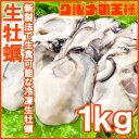 【送料無料】生牡蠣 生食用 カキ 生牡蠣 1kg Lサイズ 冷凍時1kg 解凍後850g 冷凍牡蠣むき身 新製法で冷凍なのに生食可…