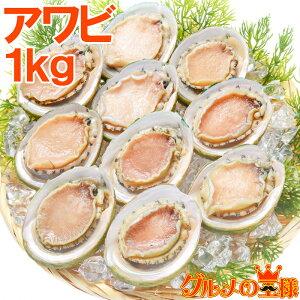 送料無料 あわび Lサイズ 1kg 1箱12個入り 殻つきお刺身用アワビ 高級料亭でも使用する新鮮な殻付きあわび!【あわび アワビ 鮑 お造り バター焼き ステーキ おせち 翡翠の瞳 貝柱 築地 寿司