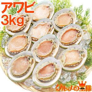 送料無料 あわび Lサイズ 3kg 合計36個 1箱12個入り 殻つきお刺身用アワビ 高級料亭でも使用する新鮮な殻付きあわび!【あわび アワビ 鮑 お造り バター焼き ステーキ おせち 翡翠の瞳 貝柱 築