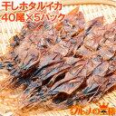 送料無料 ホタルイカ 素干し 干しほたるいか40尾×5パック シーズン最盛期の富山産ほたるいか干物は大きくて旨みが凝…