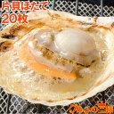 送料無料 ホタテ ほたて 特大 片貝ほたて 20枚 10枚×2袋 10〜11cmの特大サイズ!北海道産のほたて貝【殻付きほたて …