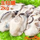 送料無料 生牡蠣 2kg 生食用カキ 冷凍時1kg 解凍後850g×2 冷凍むき身牡蠣 生食用 新製法で冷凍なのに生食可能な牡蠣…