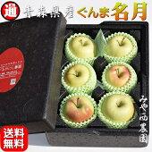 【青森りんご】贈答用リンゴ【ぐんま名月】【宮西農園】