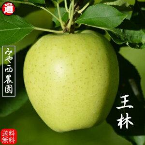 王林 青森りんご 宮西農園(秀品)5kg 青森 りんご 5kg 送料無料 青りんごりんご 送料無料 リンゴ 5kg 青森りんご 送料無料 青森 お取り寄せ 蜜入り 5kg果物通販 果物 ギフト お歳暮 りんご 贈答 青