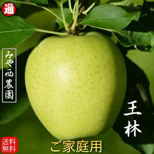 王林 青森りんご 訳あり 宮西農園(家庭用)5kg 青森 りんご 5kg 送料無料 青りんごりんご 送料無料 リンゴ 5kg 青森りんご 送料無料 青森 お取り寄せ 蜜入り 5kg果物通販 果物 りんご 青森リンゴ