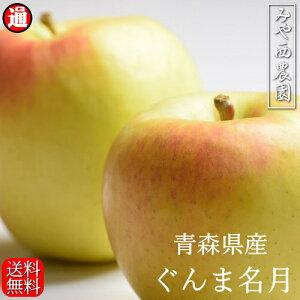 ぐんま名月 青森りんご 宮西農園(秀品)5kg 青森りんご 5kg 送料無料 りんご 送料無料 リンゴ 5kg 青森りんご 送料無料 青森 お取り寄せ 蜜入り 群馬名月 5kg果物通販 果物 ギフト お歳暮 りんご