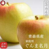 【青森りんご】リンゴ家庭用【ぐんま名月】【宮西農園】【訳ありりんご】