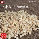 ハトムギ 精白 送料無料 500g 青森県産 精白はとむぎ 雑穀 はと麦 雑穀米 ハトムギ はとむぎ 国産 ヨクイニン コイク…