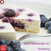 レアチーズケーキonブルーベリー無農薬ブルーベリーホールスイーツ送料無料冷凍スイーツ無添加母の日プレゼント誕生日ケーキスイーツギフト