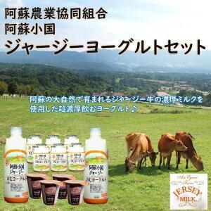 熊本 阿蘇小国農協 ヨーグルトギフトセットYS−1 ギフト お取り寄せ 阿蘇 小国農協 ヨーグルト