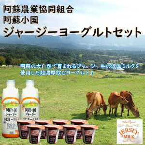 熊本 阿蘇小国農協 ヨーグルトギフトセットYS−2 ギフト お取り寄せ 阿蘇 小国農協 ヨーグルト