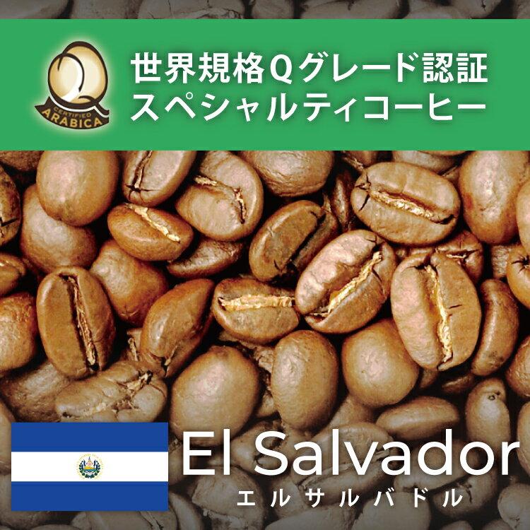 エルサルバドル世界規格Qグレード珈琲豆(300g)/グルメコーヒー豆専門加藤珈琲店/珈琲豆