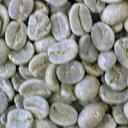 [生豆]ブラジル・サントスNo2(100g)(ブラジルサントス)/グルメコーヒー豆専門加藤珈琲店/珈琲豆