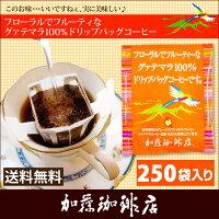 グァテマラ珈琲100%ドリップバッグコーヒー250袋入りセット