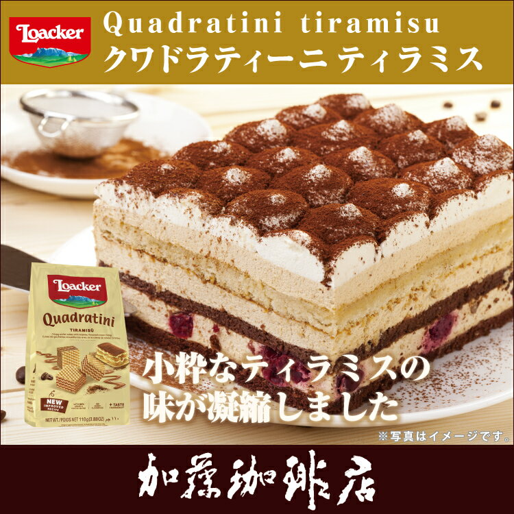 ローカー/クワドラティーニ(ティラミス)/グルメコーヒー豆専門加藤珈琲店