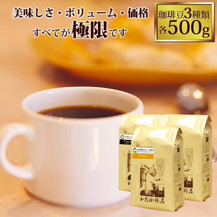 極限の珈琲福袋(Z)(Qペル・Qメキ・Qコロ/各500)/珈琲豆
