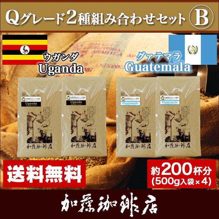 Qグレード2種組み合わせセットB(Qエル×2・Qケニ×2)/珈琲豆