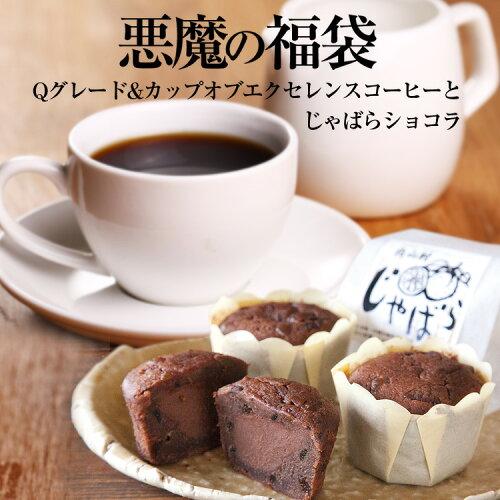 悪魔の福袋 送料無料 加藤珈琲 コーヒー 父の日...