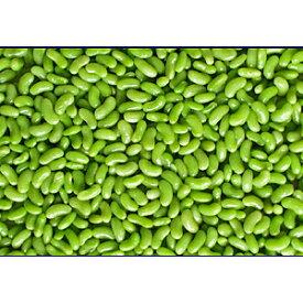 冷凍フラジョレベール(インゲン豆) 2.5KgX4P/ケース販売/冷凍野菜/業務用/まとめ買い