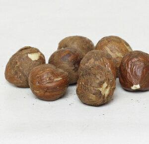 生ヘーゼルナッツ、むき身 500gP ナッツ/製菓用/パン材料/皮つき/トッピング/無塩/無添加/ダイエット