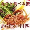 丸ごと食べられる蟹![ソフトシェルクラブ プライムサイズ1kg(約70g×14匹)]