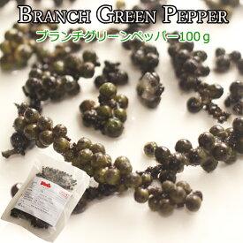 生こしょう[ブランチグリーンペッパー] 枝付きコショウ 100g 【冷凍品】