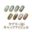 【ゆうパケット対象商品】磁石であらゆる模様が楽しめる!角度によって変化するマグネットジェル!ラブリー5Dキャッツ…