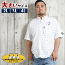 【大きいサイズ・メンズ】シナコバ/SINA COVA カットドビー総柄ボタンダウン半袖シャツ  グランバック 大きいサイズ