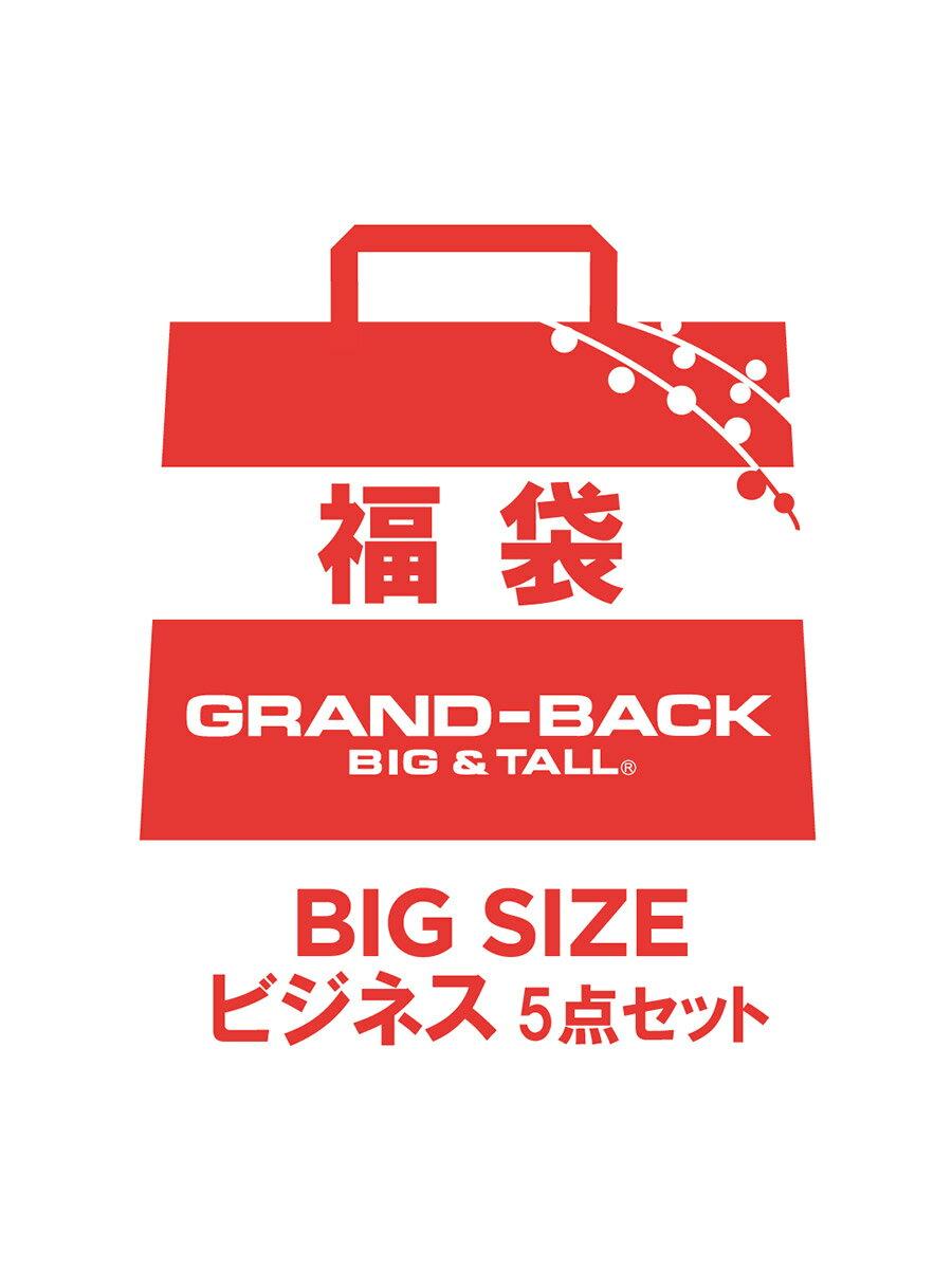 【大きいサイズ・メンズ】2019 ビジネスドレスシャツ5点セット福袋