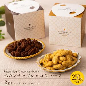 チョコレート プチギフト 送料無料 スイーツ ペカンナッツショコラ ハーフ 250g入ボックス( キャラメル、ココア )×各1箱 ピーカンナッツ チョコ おしゃれ 高級 日持ち お取り寄せ ショコラ