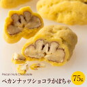 【あす楽】 ピーカンナッツチョコ プチギフト ペカンナッツショコラ 75g スタンドパック(かぼちゃ)