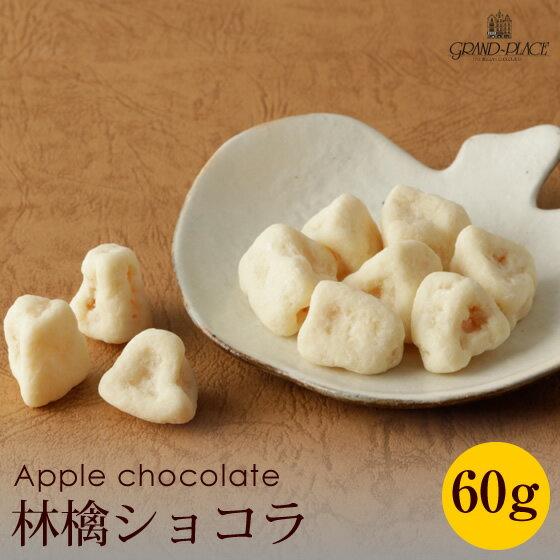 ホワイトデー 林檎ショコラ60g[rz][nr]