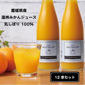 数量限定 愛媛産 温州 みかん ジュース (720ml×12本セット) 100% ストレート おまとめセット オレンジジュース 丸搾り 100パーセント 高級 ギフト ご自宅用 GrandVillage 送料無料