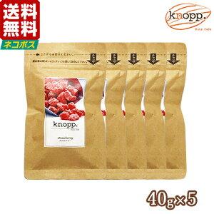 【メール便送料無料】ドライフルーツ いちご ストロベリー 200g 40g×5袋 kp mb