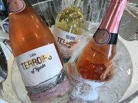 【送料無料】パエリアとスペインワインとオリーブの美味しい3点セット【数量限定☆木べらセットプレゼント付き!】(お好きなオリーブをお選びください)