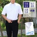学生服 ワイシャツ 半袖 男子A体(標準) スクールタイガー 【学生服 スクールシャツ 半袖 男子 学生 白 男子 カッター…