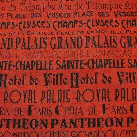 【メール便OK】【50cm以上10cm単位】【USAコットン 生地 布】 I DREAM OF PARIS アイドリームオブパリ