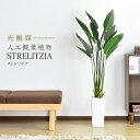 人工観葉植物 光触媒 ストレリチア120cm 水やり不要 高さ120 インテリアグリーン 観葉植物 造花 ストレリチア