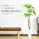 パキラL(高さ140〜160) 人工観葉植物 光触媒 パキラ140cm 水やり不要 高さ140 インテリアグリーン 観葉植物 造花 パ…