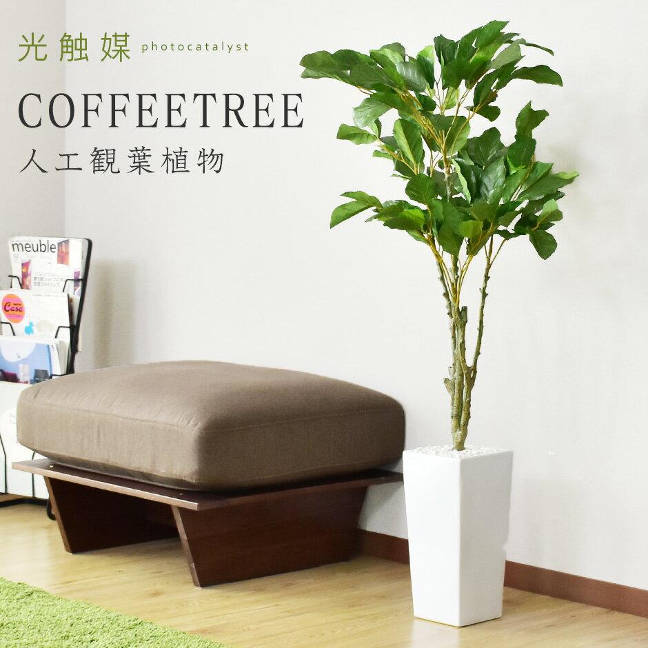 人工観葉植物 光触媒 コーヒーツリー 水やり不要 インテリアグリーン 観葉植物 造花 コーヒーツリー