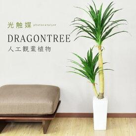 人工観葉植物 光触媒 ドラゴンツリー 水やり不要 インテリアグリーン 観葉植物 造花 ドラゴンツリー