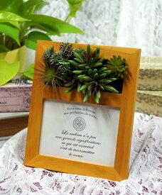 アートフラワーフォトフレーム 多肉植物 写真立て ギフト お祝い プレゼント 出産祝い 記念日 結婚祝い 母の日 父の日 敬老の日 ペット お供え