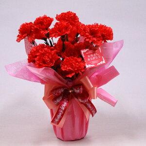 光触媒 カーネーションポット【ポイント5倍】母の日プレゼント 造花 アートフラワー