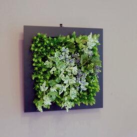 壁掛けグリーンフレーム フレッシュアイビー ブラック(光触媒)造花・観葉植物・インテリアグリーン・フェイクグリーン・人工観葉植物